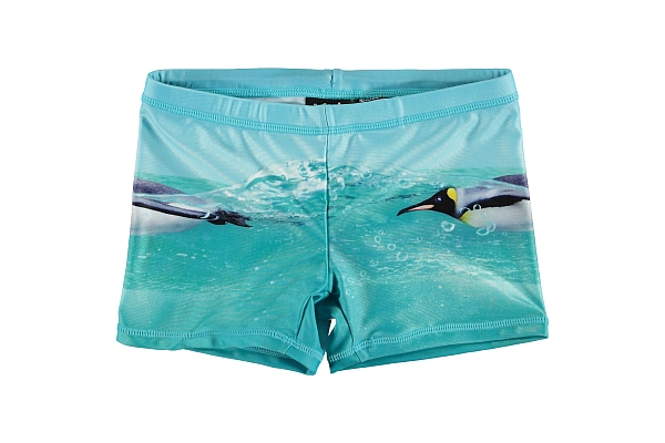 Molo Kids  Norton Placed The Penguin UPf Shorts